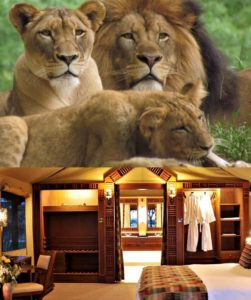 2 Day Masai Mara Safari from Nairobi