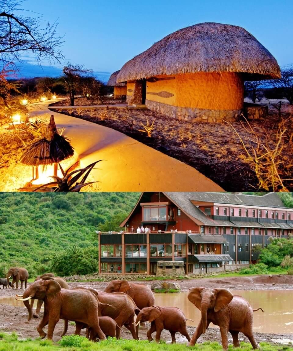 Kenya Classic Safari