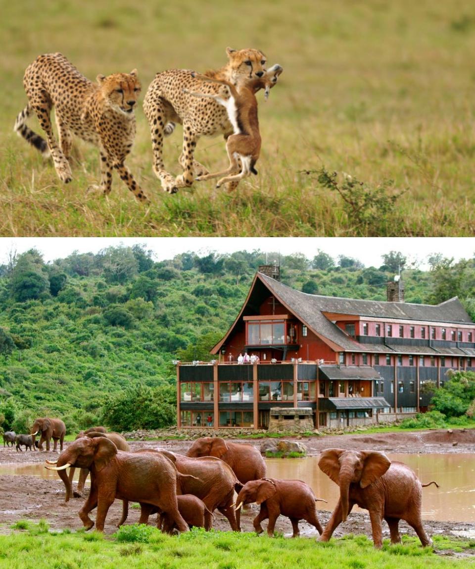 Kenya Ultimate Treasures Safari