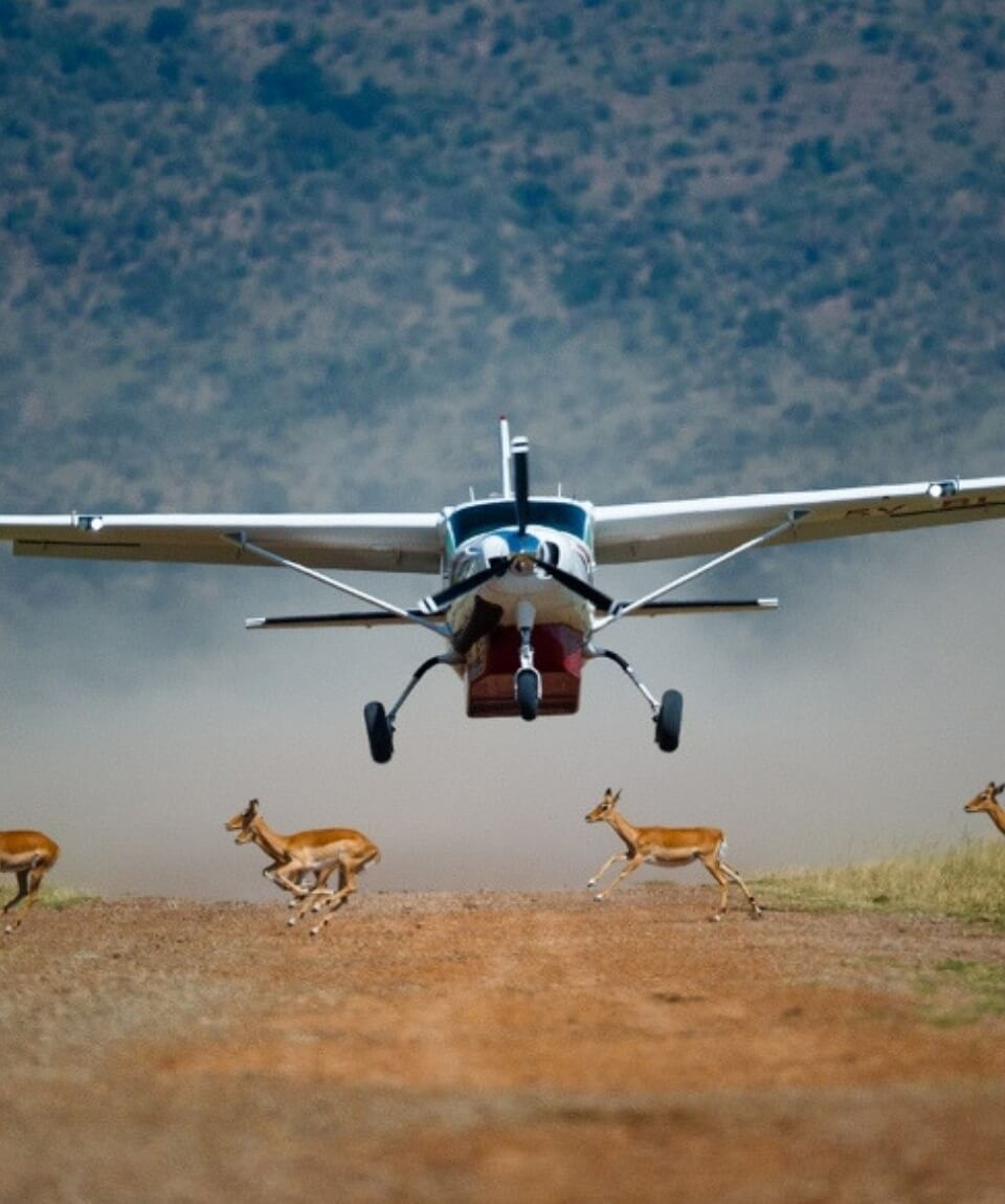 Premium Kenya Flying Luxury Safari