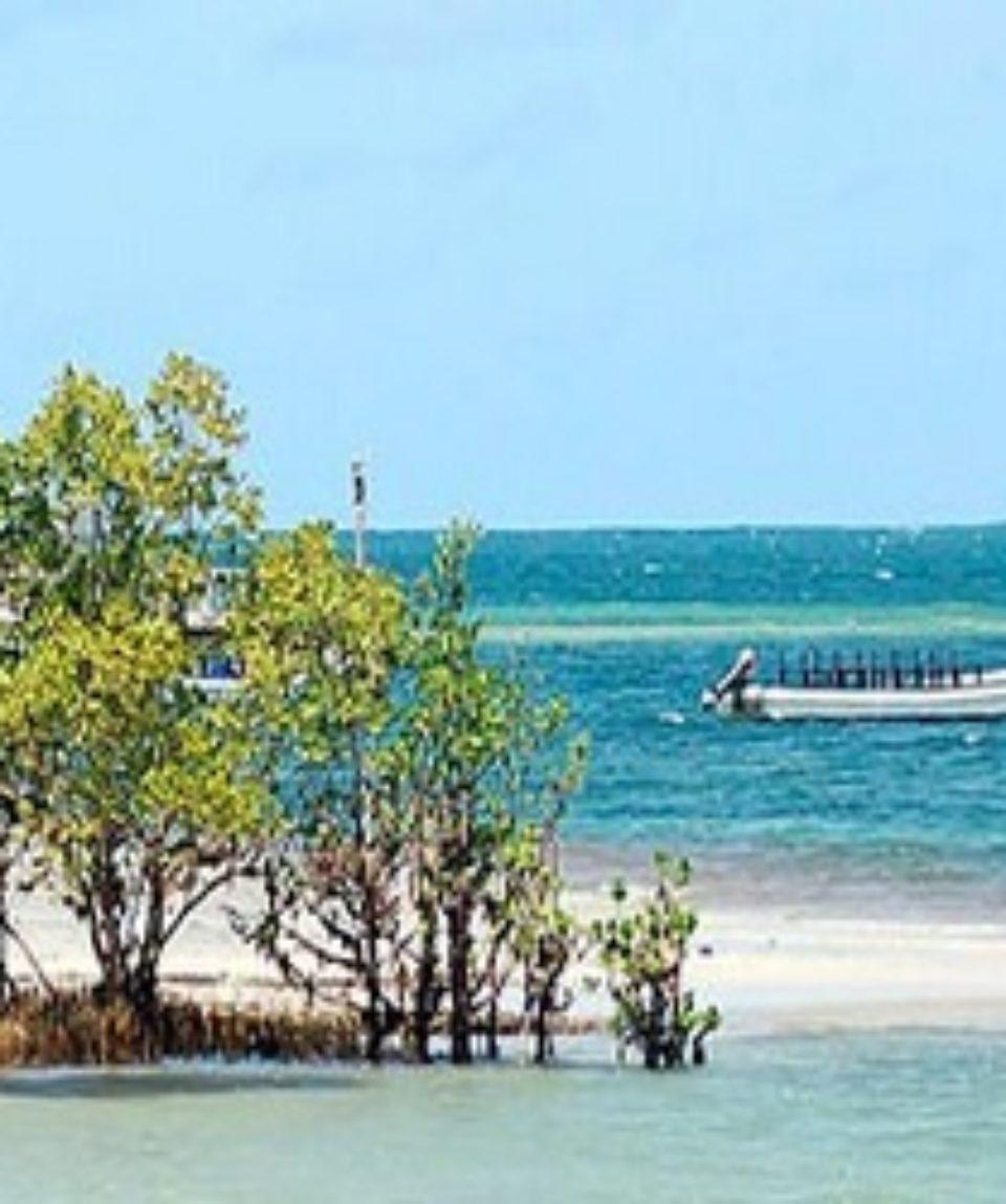 Funzi Island Safari