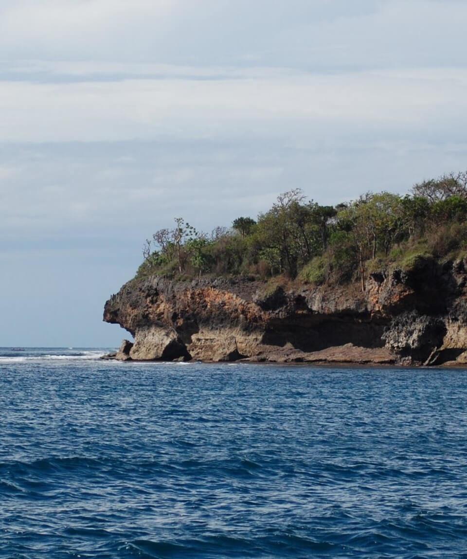 Wasini Island Tour