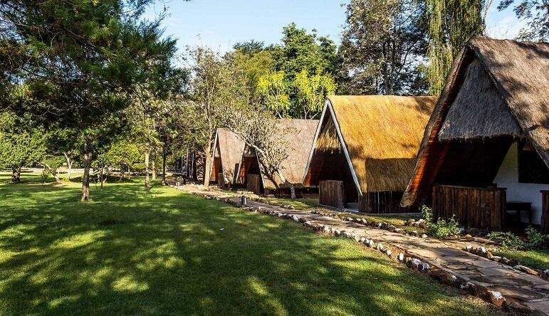 3 Days Mara Concord Game Lodge Safari